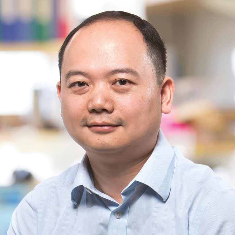 Ye Zheng Salk Institute For Biological Studies