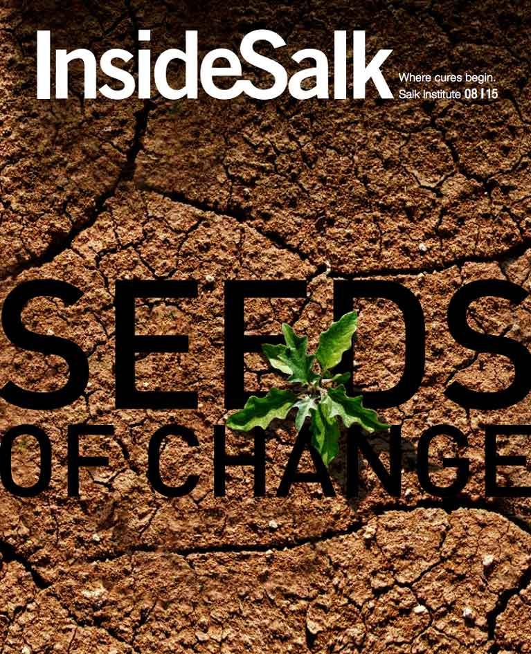 InsideSalk August 2015