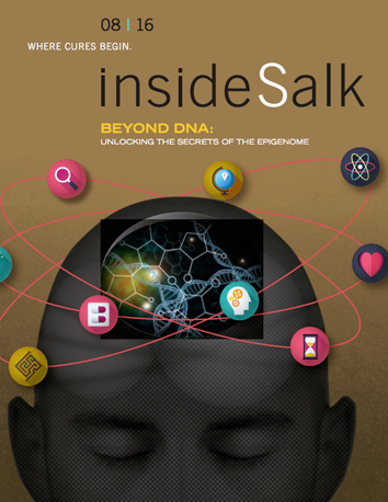 InsideSalk August 2016