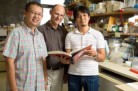 Research associate Guanghui Liu, Professor Juan Carols Izpisua Belmonte, and  Keiichiro Suzuki, research associate.