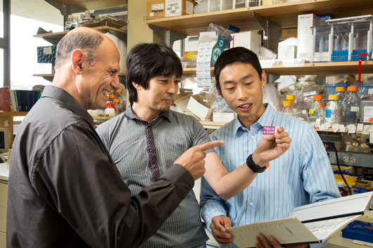 Juan Carlos Izpisua Belmonte, Keiichiro Suzuki and Mo Li of the Gene Expression Laboratory