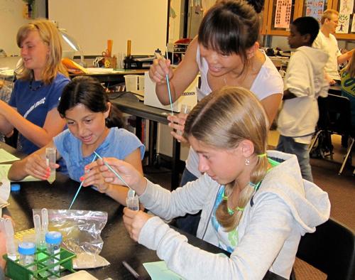 Salk volunteer opportunities