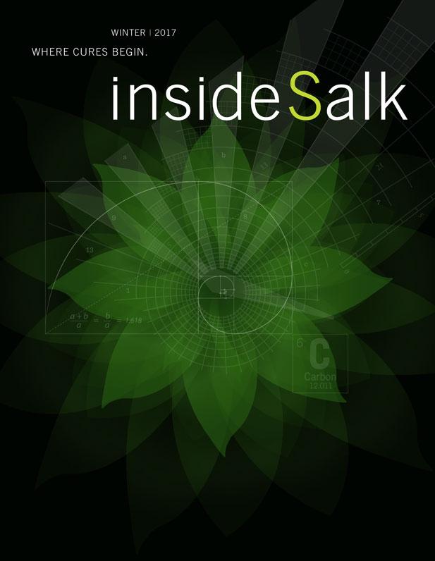 InsideSalk Winter 2017