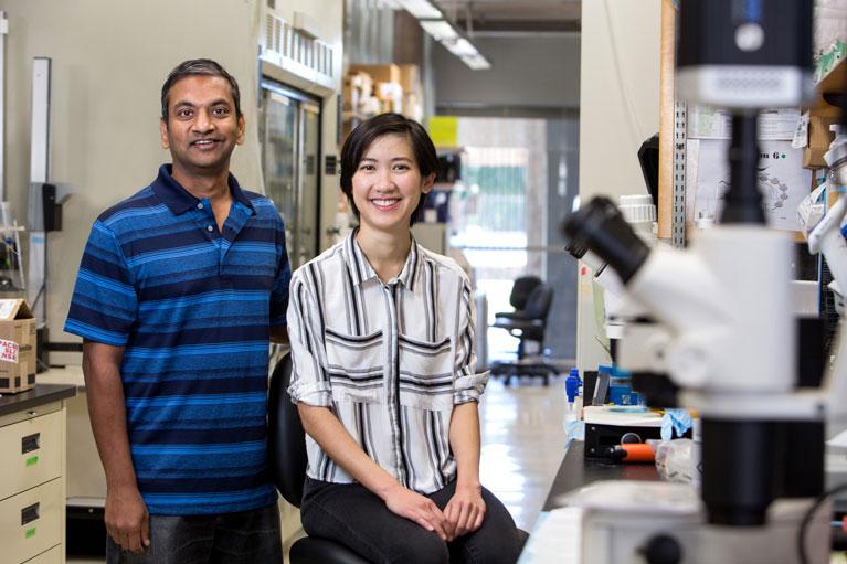 Salk institute for biological studies where cures begin fandeluxe Images