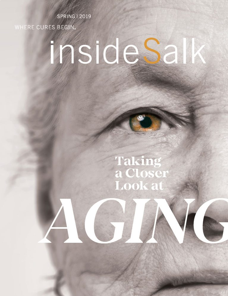 inside-salk-spring-2019-cover