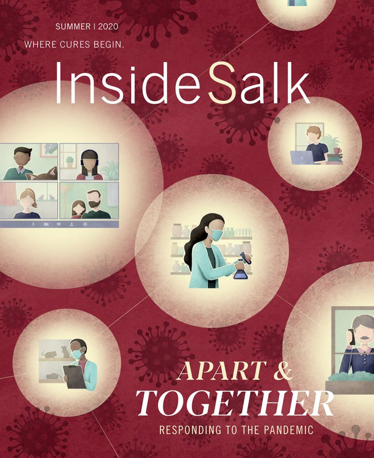 Inside Salk Summer 2020 cover