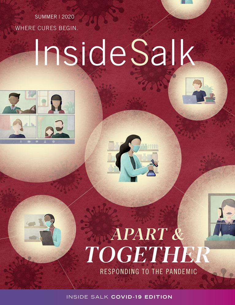 InsideSalk Summer 2020