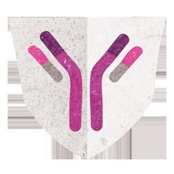 Immune System Biology