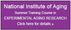 Click here for details on the National Institute of Aging Summer Training